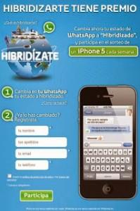 hibridizate-toyota