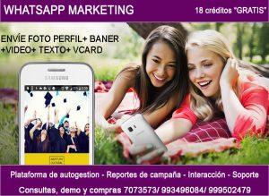 Whatsapp VCARD